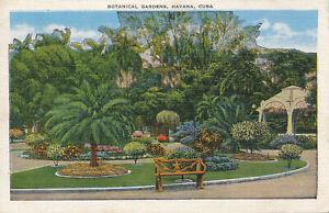 PC31051 Botanical Gardens. Havana. Cuba. Roberts and Co