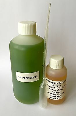 live phytoplankton nannochloropsis oculata phyto plus culture kit B