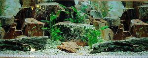 Fond Décoratif De Aquarium 80cm X 50cm Hauteur Paysage,terrarium,aquarium