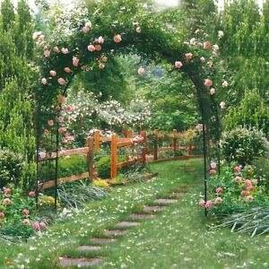 xft colorful garden photography background backdrops