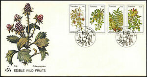 Transkei-1978-Edible-Wild-Fruits-FDC-First-Day-Cover-C41530