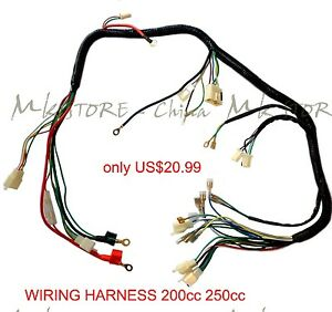 quad wiring harness 200 250cc chinese electric start loncin zongshen rh ebay com Automotive Wiring Harness 250cc scooter wiring harness