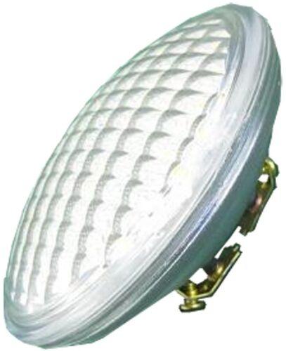 12V AC//DC Lamp Eq to 35W Halogen LED PAR36 5W