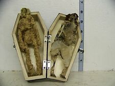 LOOSE Zombie Skeleton Mummy Bride and Groom Figures