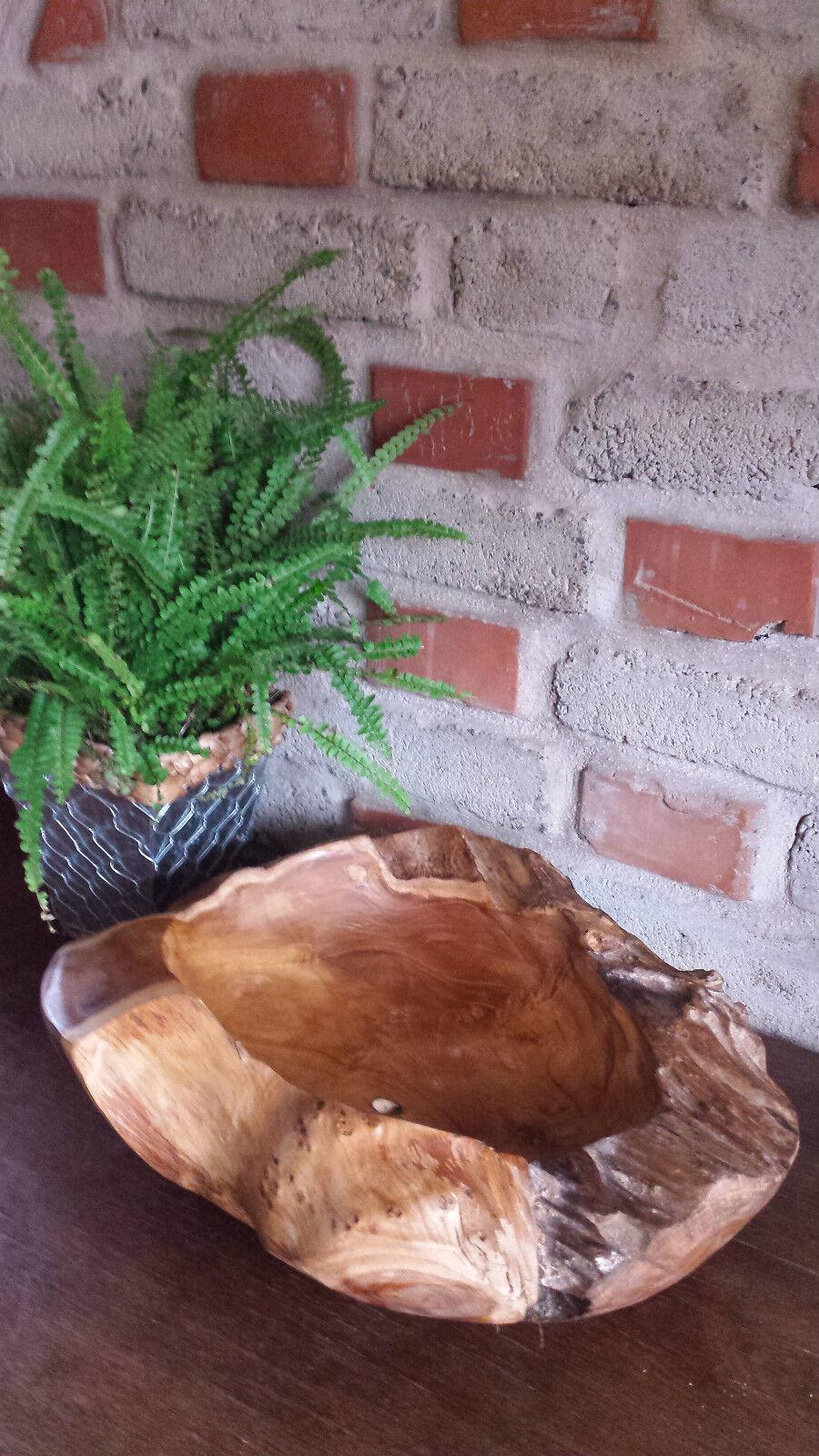 Schale Teakholz Teakholz Teakholz Obstschale Pflanzen schale Garten Dekoration Schüssel Unikat | Konzentrieren Sie sich auf das Babyleben  bbbfe9
