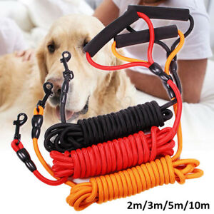 Image Is Loading 8mm Dog Leads Walking Leash Outdoor Pet Puppy