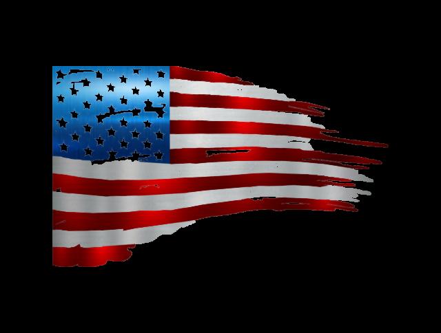"Tattered American Flag Plasma 19/"" x 12/"" Metal Sign"