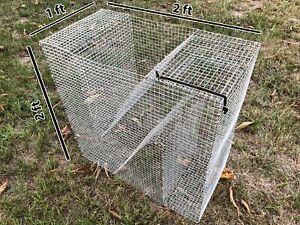Z-Bait Fish Trap (Bream, Perch, Sunfish, Pinfish, Bullhead Trap)