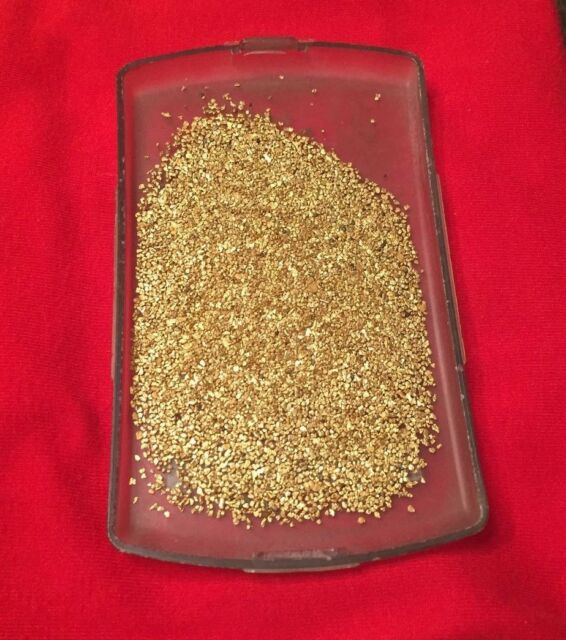 33 pieces of Alaska Alaskan \ Virginia gold nugget nuggets bullion