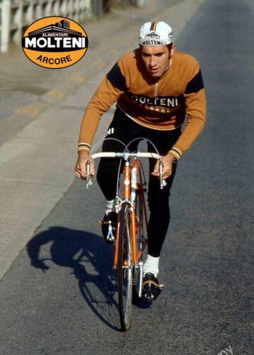 Eddy Merckx Molteni Campagnolo Super Record Colnago vintage A4 poster