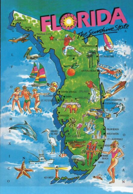State Map of Florida Sunshine State 5 X 7 Postcard for sale online ...