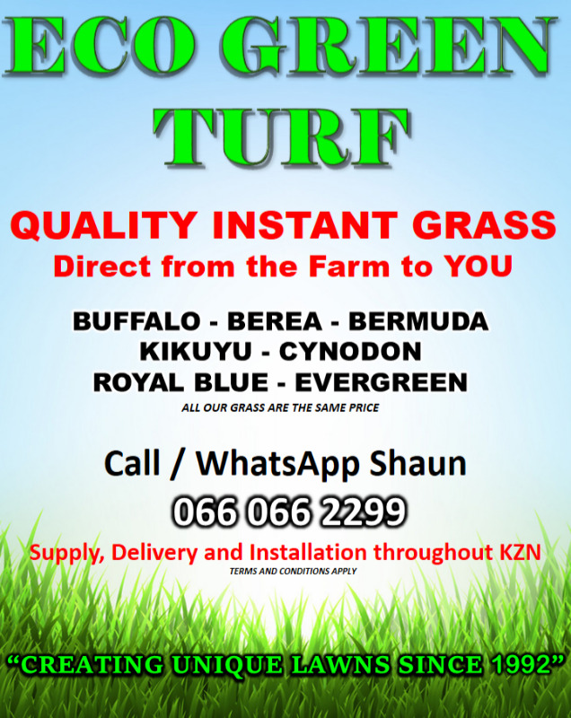 ECO GREEN LAWN/GRASS FOR SALE