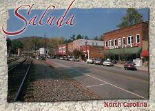 Saluda, North Carolina, Norfolk Southern Railway Saluda Grade, NC --- Postcard