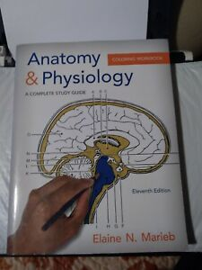 Details about Anatomy & Physiology Coloring Workbook: A Complete Study Guide