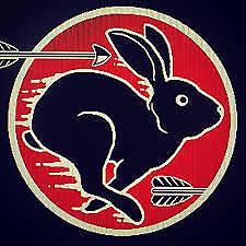 rabbit-916