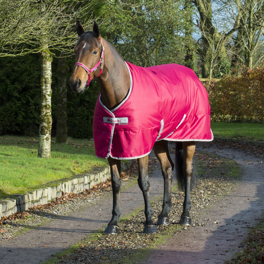 Bucas Freedom stable 300gPERSIAN rosso