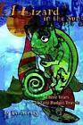 a Lizard in The Sun Three Years of Zero Budget Travels Pat Bensky 0595273343