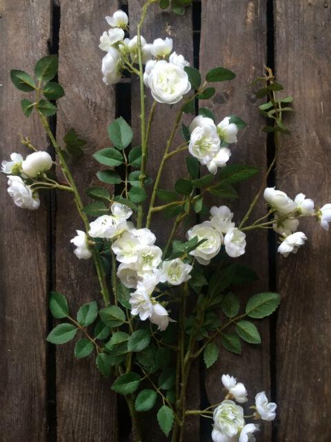 Pretty white artificial rose branch realistic silk flowers faux pretty white artificial rose branch realistic silk flowers faux ivory roses mightylinksfo