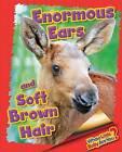 Enormous Ears and Soft Brown Hair (Moose) by Ellen Lawrence (Hardback, 2015)