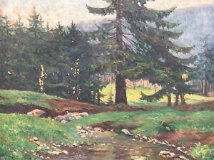 E-V-Aster-coniferous-forest-Thuringia-Bavarian-Forest-German-painter-damaged