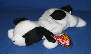 TY SPOT the DOG BEANIE BABY - MINT with MINT TAGS 8421040001  ffbe0892d835