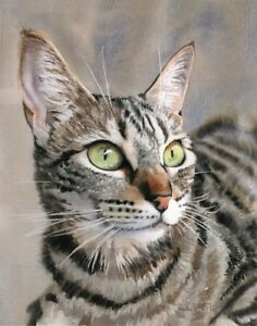 Opinion you tiger striped tabby cats think, that