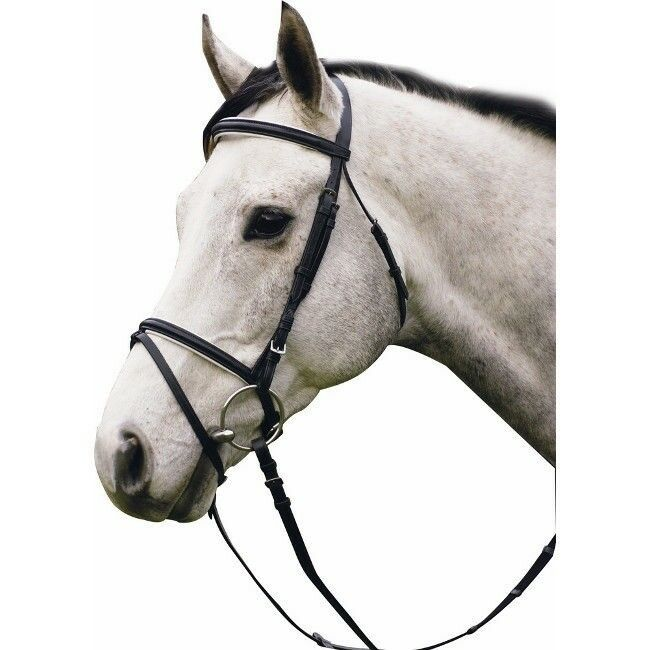 Henri de Rivel Padded Caveson and Brow Robeage Bridle with Web Reins