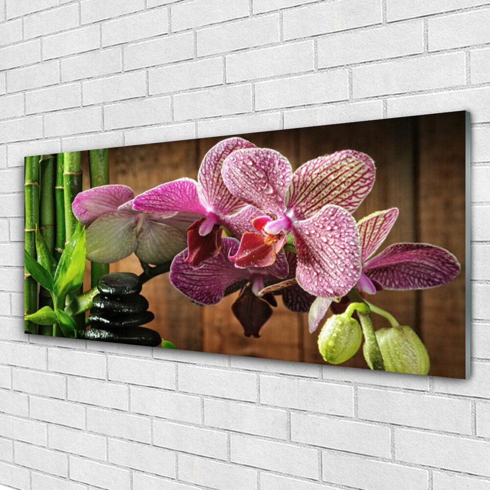 Tableau murale Impression sous verre 125x50 Floral Fleurs Bambou Pierres