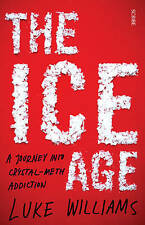 The Ice Age: a journey into crystal-meth addiction: 1, Williams, Luke, Good, Pap