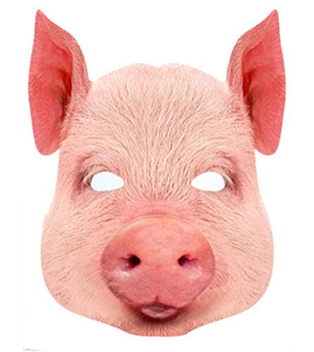 Pig Animal 2D Card Party Face Mask Fancy Dress Up Farm Theme