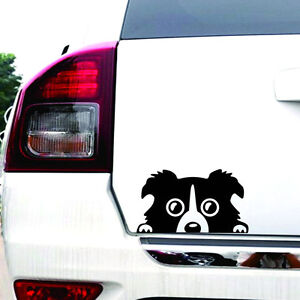 1pc border collie dog car sticker vinyl cars decals auto Getting stickers off glass