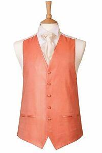 Hombre-Nuevo-Palido-Naranja-Coral-BODA-Esmoquin-Vestido-Graduacion-baile-CRUISE
