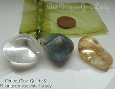 Study / Student Blend Tumblestone Stone Gift Set ~ Gemstone Crystal Healing