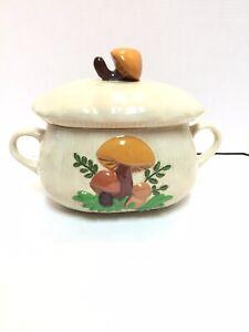 Vintage-mushroom-ceramic-cookie-jar-canister-Rare-Rectangular-Shape