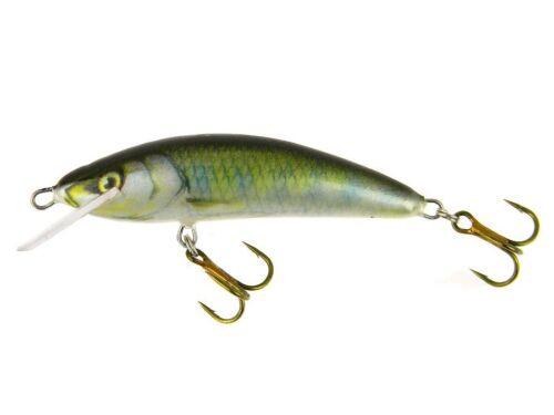 Kenart Winner 2,5cm 2g Floating Lure Crankbait Trout Chub Asp Perch