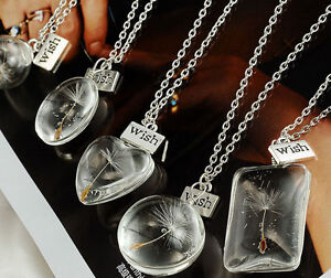 Crystal-Ball-Real-Dandelion-Seed-Wishing-Wish-Necklace-Long-Silver-Chain-Fashion