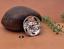 10X-Bohemian-3D-Flower-Turquoise-Conchos-For-Leather-Craft-Keychian-Wallet-Decor miniatuur 9