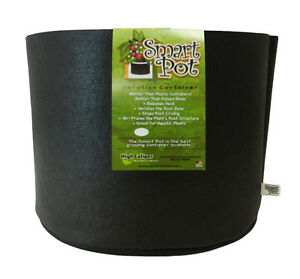 Nutley\'s Smart Pot fabric air pruning tomato & melon growbag planter ...
