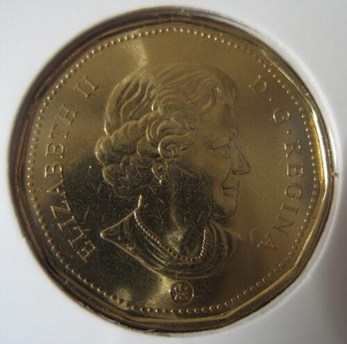 2012 RCM Loon BU $1 Old Style Sealed in original hard plastic