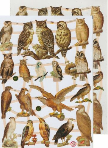 Chromo EF Découpis Rapaces Hibou 7333 Embossed Illustrations Birds of prey