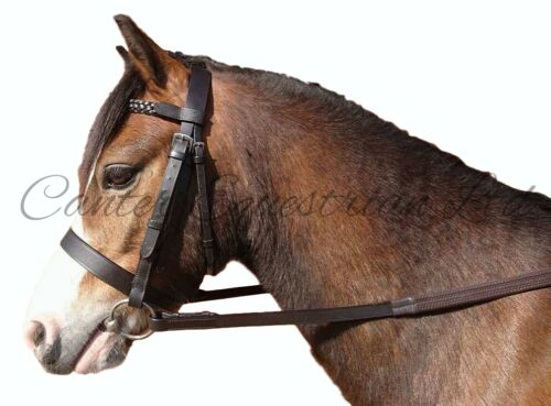 Leather Bridle /& Rubber Reins Full NEW Pony Shetland Flash or Hunter Cob
