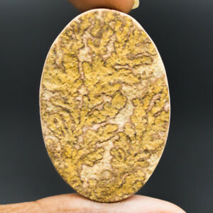 Cts-60-70-Natural-Psilomelane-Dendritic-Limestone-Oval-Cabochon-Loose-Gemstone