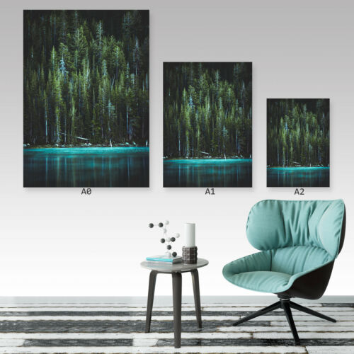 Pine Forest At Lake Shore A0 A1 A2 A3 A4 Satin Photo Poster a1652h