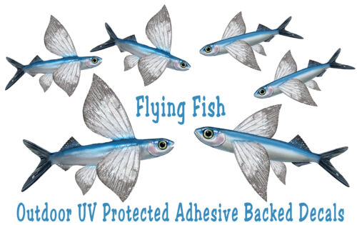 Flying Fish Decals Bumper Stickers Gifts Fisherman Fishing Left &  Right Facing