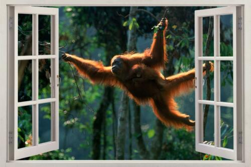 Orang-outan singe 3D Fenêtre Autocollant Graphique Autocollant Mural Art Mural Animaux H430