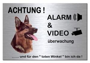 FäHig Schäferhund-hund-alarm-video-30 X 20 Cm Alu-edelstahl-optik-schild-warnschild Verhindern Dass Haare Vergrau Werden Und Helfen Den Teint Zu Erhalten
