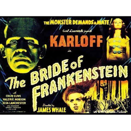 Movie Film Sequel Bride Frankenstein Karloff Whale Horror Usa Framed Art Print