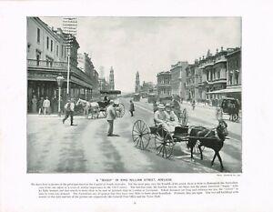 King-William-Street-Adelaide-Australia-Horse-And-Buggy-1897-Antique-Print-TQE-38