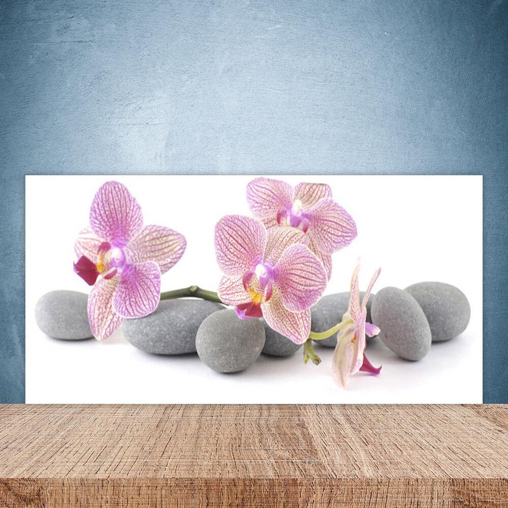Crédence de cuisine en verre Panneau Paroi 100x50 Floral Arbres Pierres
