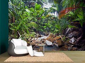 Jungle Trees Rainforest Tropical Photo Wallpaper Wall